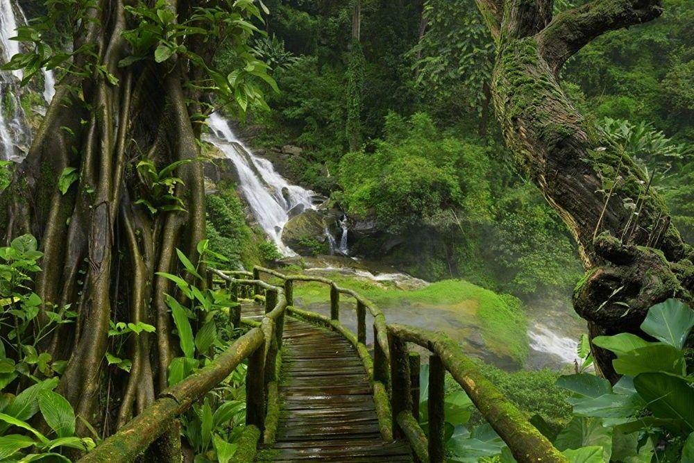 a fazer em Natural Florestas Tailândia