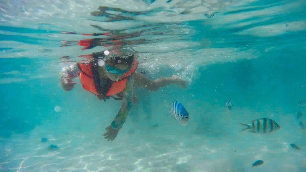 a fazer nas ilhas Perhentian Snorkeling