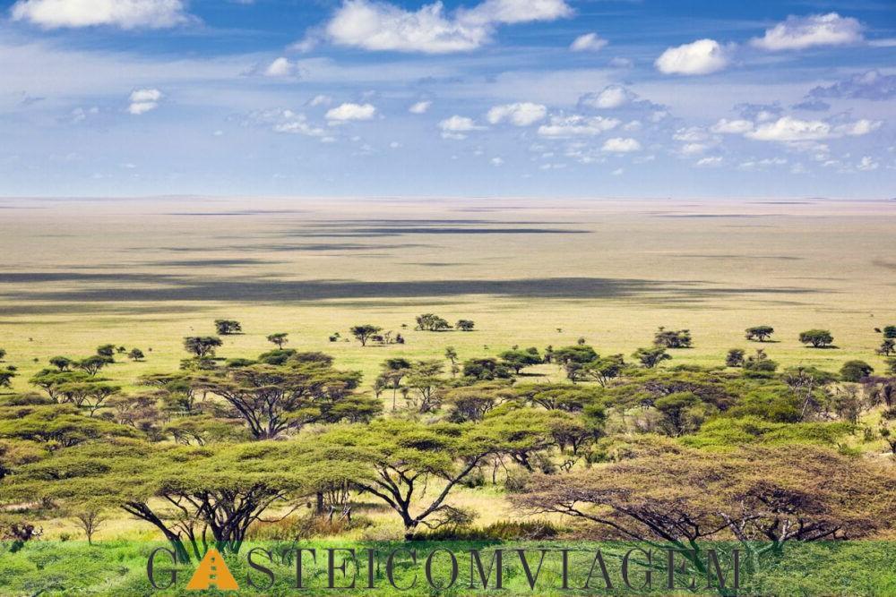 A visão do Parque Nacional Ruaha
