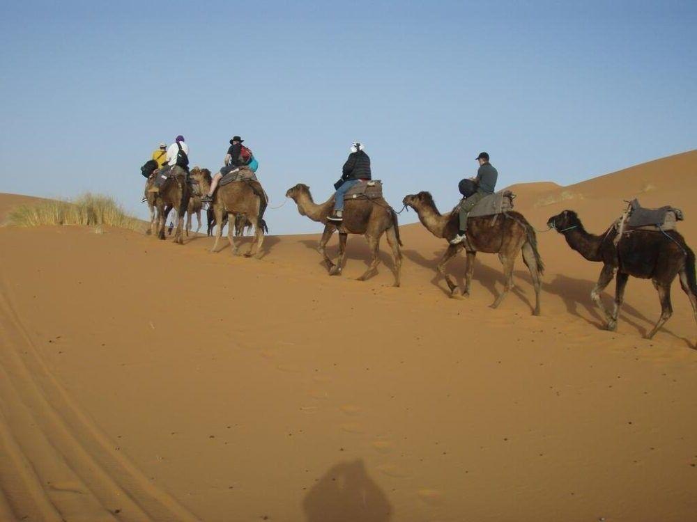 andar e camelo