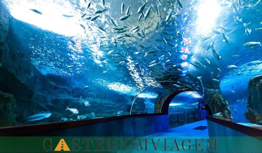 Aquarium Donostia San Sebastian