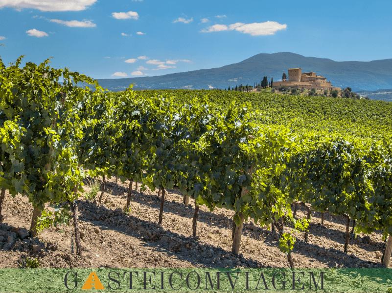 Chianti Wine Regionpng