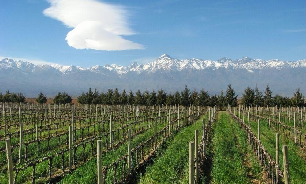 Culturas de regiões vinícolas de Mendoza