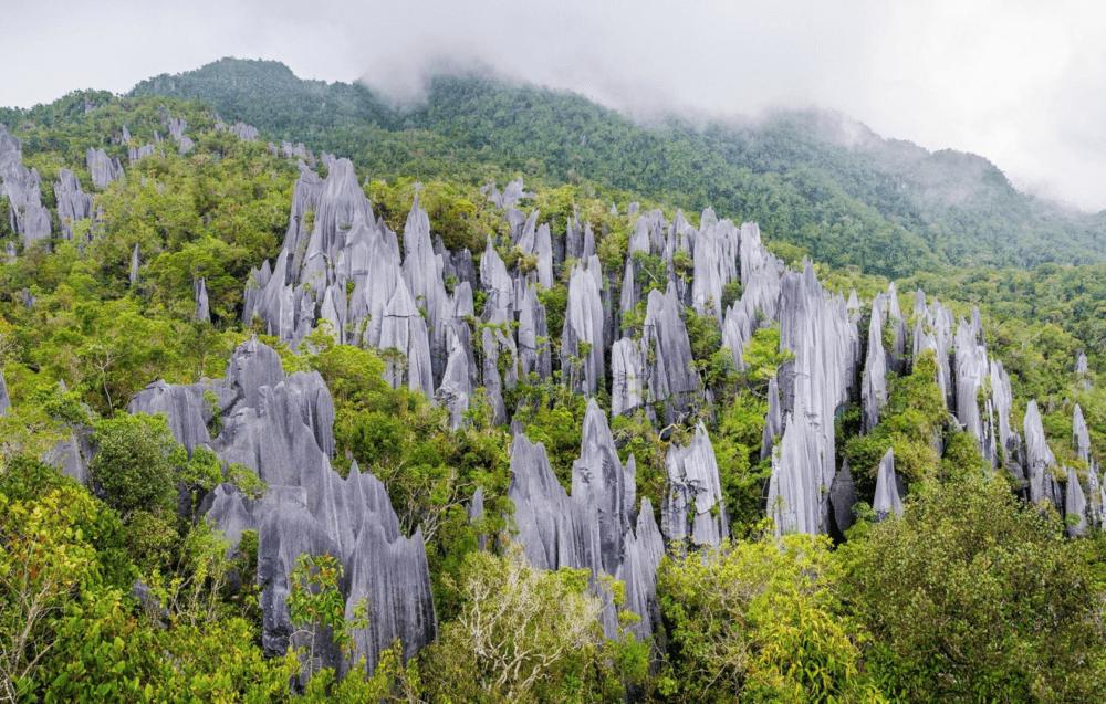 Destino Gunung Mulu Parque Nacional Malasiapng