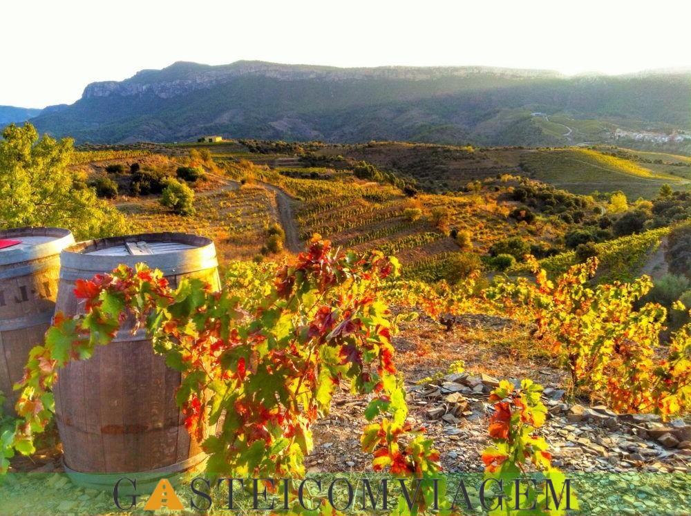 destino Rioja Wine Region Espana