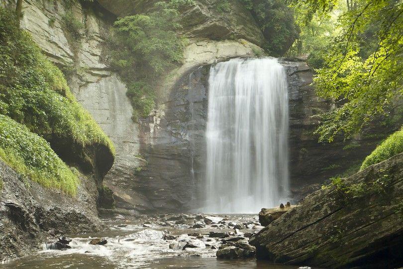 Floresta Nacional de Pisgah
