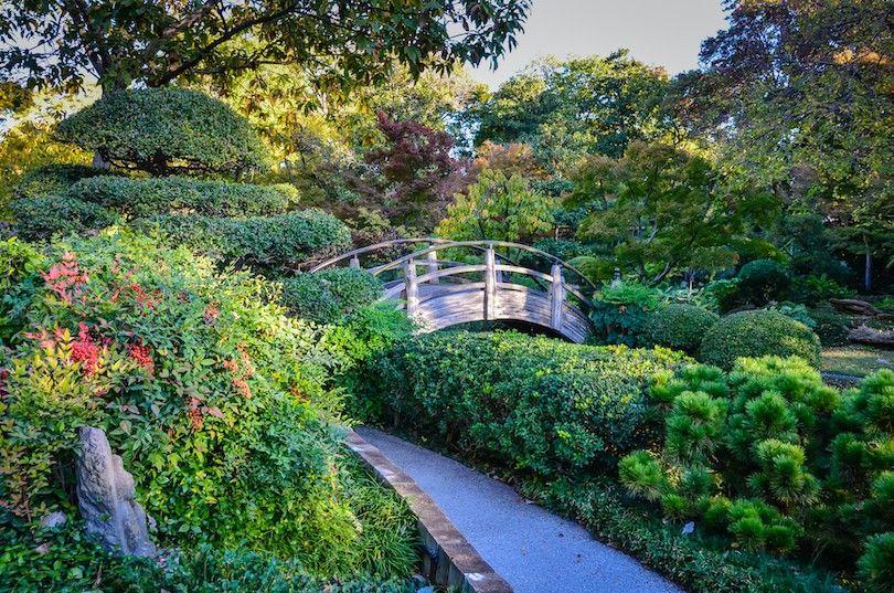 Fort Worth Botanic Garden
