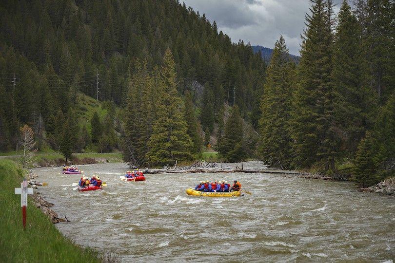 Gallatin rio