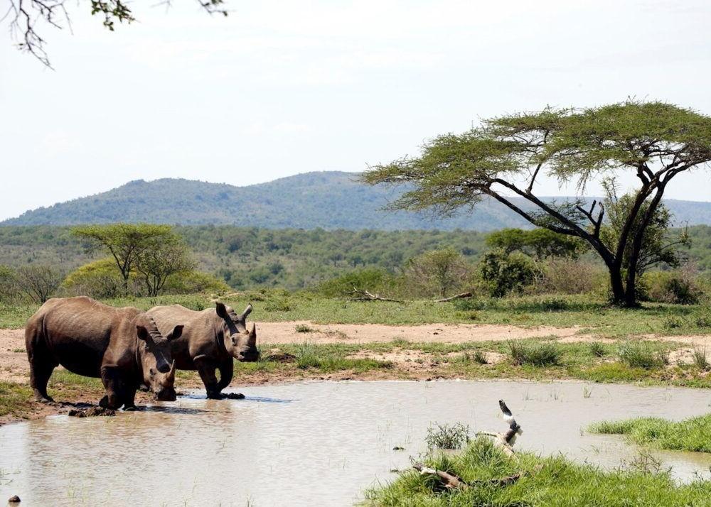 Hluhluwe Umfolozi Game Reserve