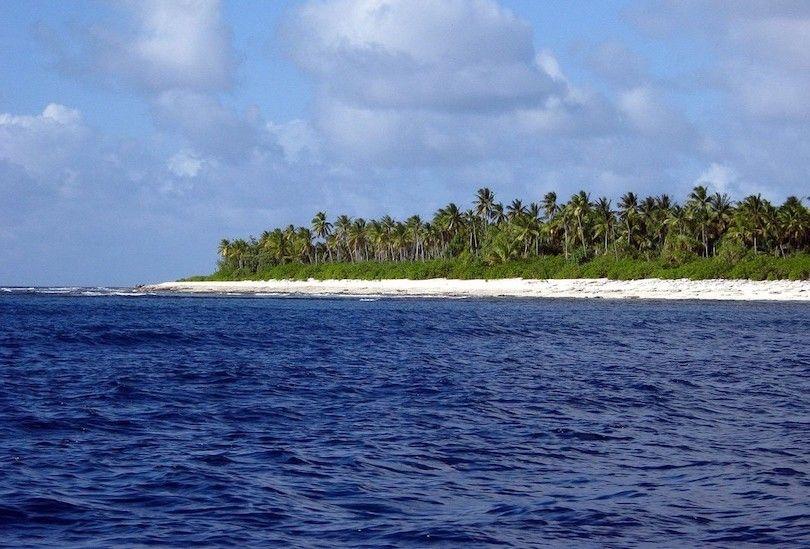 ilhas fenix