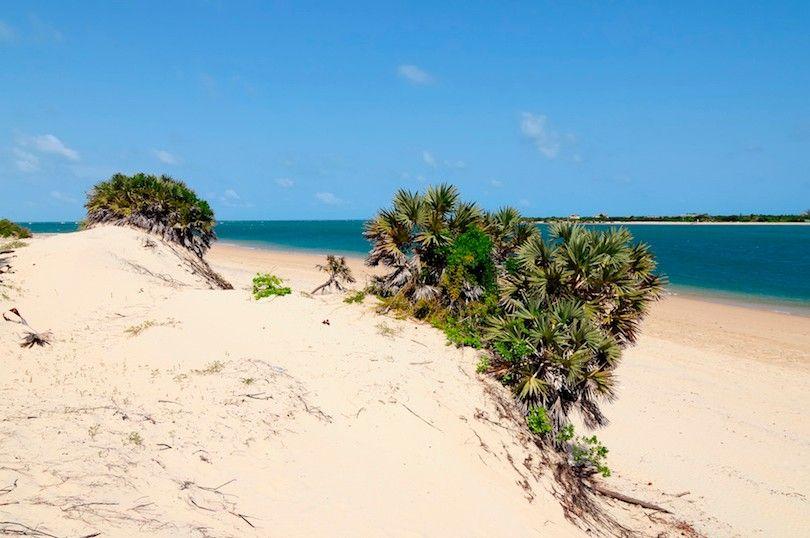 Lamu praias