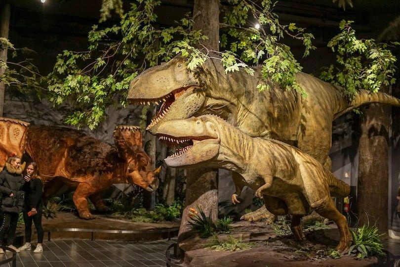 museu canadense Nature