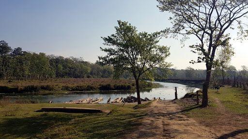 Parque Nacional Chitwan