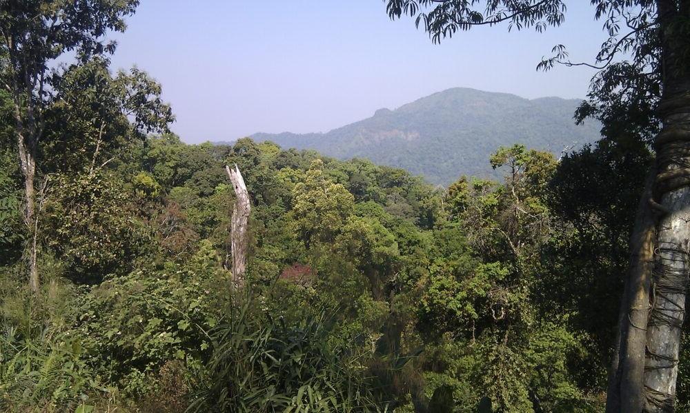 Parque Nacional Kaeng Krachan