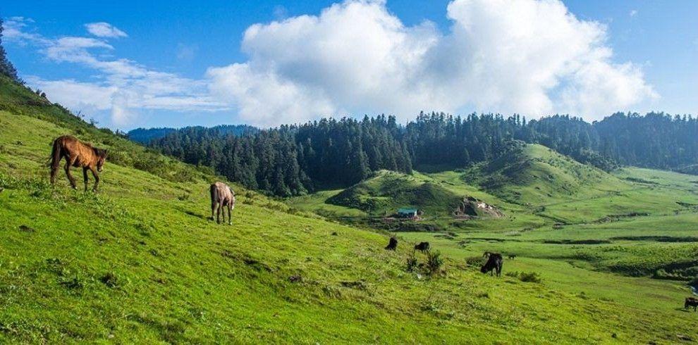 Parque Nacional Khaptad