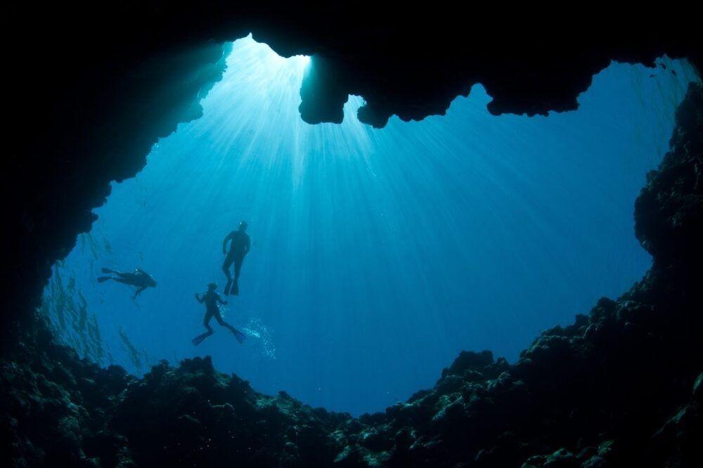 Spots Palau de mergulho